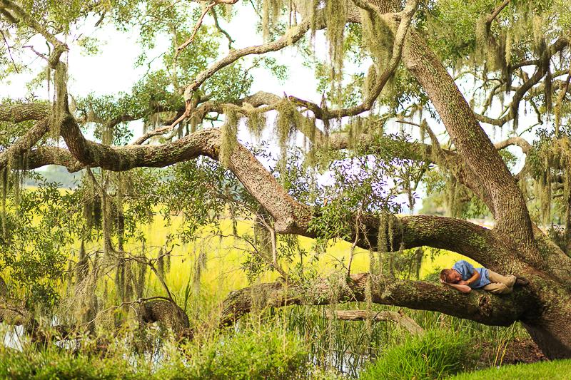 environmental portrait man sleeping in a tree