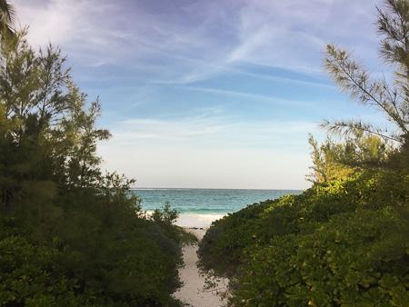 hut pointe beach path elethera bahamas