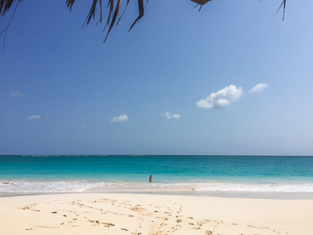 hut pointe beach eleuthera bahamas
