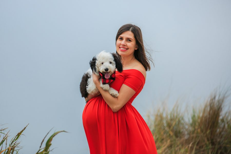 maternity photographs with puppy at the beach examples red dress